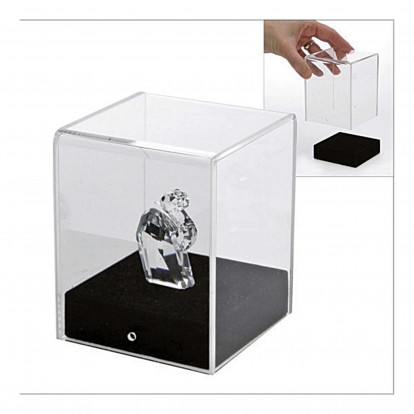 Acrylic Display Cube 100x100 with suede lined wooden base